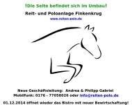 Bild Webseite  Falkensee