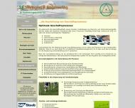 Website SE Strategies & Engineering