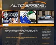 Bild Webseite Auto - Spreng Sale & Rent Frankfurt