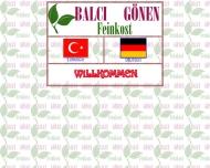 Bild Webseite Balci & Gönen Hamburg