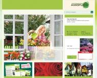 Bild AMO-Flor-Gärtnergemeinschaft GmbH