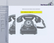 Bild Webseite Intelkom Bad Köstritz