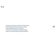 Bild Webseite MAS Management und Software München