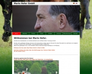 Bild Mario Hofer GmbH