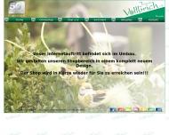 Bild Webseite  Bönningstedt
