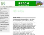 Bild Webseite Adelphi Consult Berlin