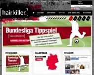 Bild Webseite  Dillingen an der Donau