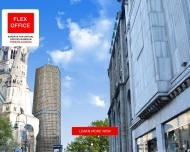 Bild Webseite Virtuelle Büros Berlin