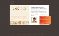 Bild Webseite CEC Claudia Effertz Consult Griesheim