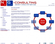 Bild NG-consulting - Senior IT Consultant Services