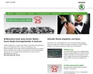 Bild Webseite  Delitzsch