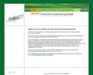 Bild Webseite Eulert Unternehmensberatung Berlin