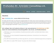 Bild Profundus Dr. Schröder Consulting e.K. Consulting