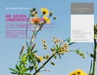 Bild Webseite meerdesguten Wiesbaden