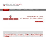 Website Marketing Consult