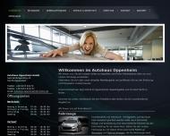Bild Webseite  Dienheim