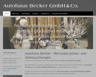Bild Webseite  Raubach