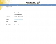 Website Biber Hermann