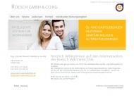 Bild Webseite Ing. Cornel Roesch Köln