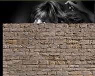 Bild Webseite Haarscharf Friseur Berlin