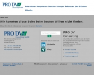 Website PRO DV Consulting