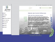 Bild Webseite Fey + Pfaff Nürnberg